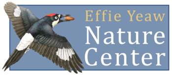 Effie Yeaw Sacramento Nature Center Logo