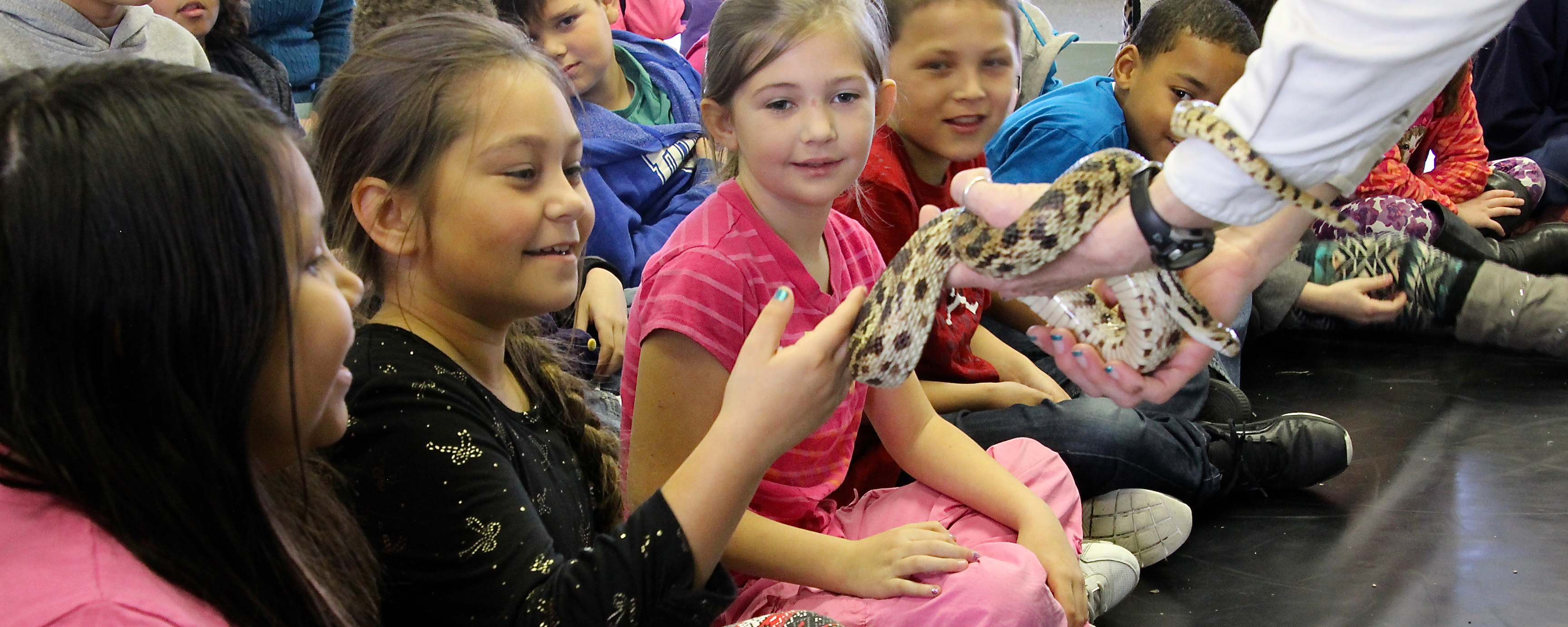 Students get up close with a gopher snake