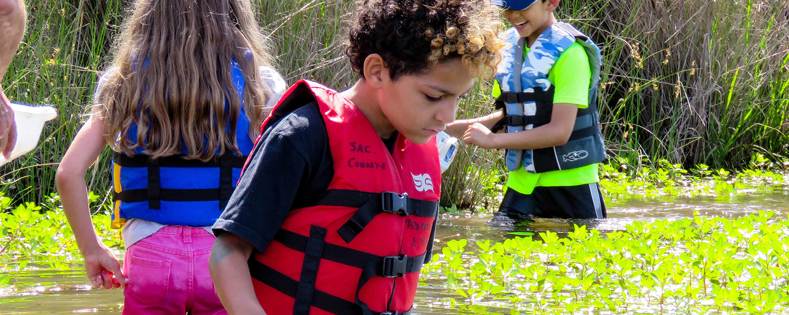 Kids Exploring the Water at Summer Camp