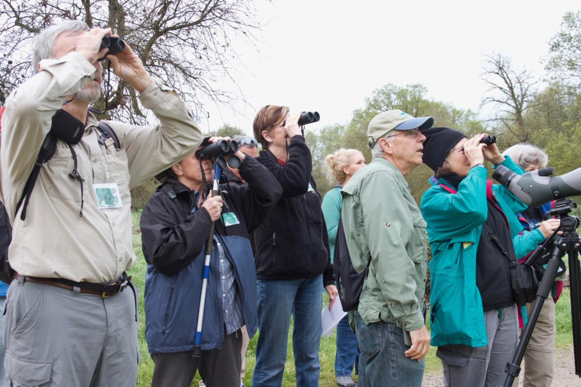 Birders out on the trail at Bird and Breakfast
